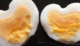 Les œufs durs de Lea
