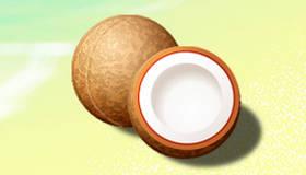 La traque des noix de coco