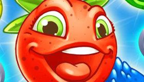 Fruit fighter